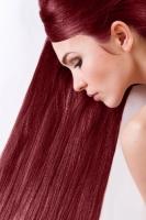 Краска для волос SanoTint Classic 22 Лесная ягода