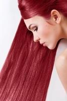 Краска для волос SanoTint Classic 23 Красная смородина