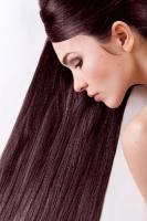 Краска для волос Sanotint Light 78 Махагон