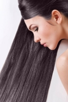 Краска для волос SanoTint Classic 03 Каштановый