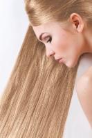 Краска для волос SanoTint Classic 19 Светлый блондин