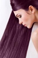 Краска для волос SanoTint Classic 21 Черника